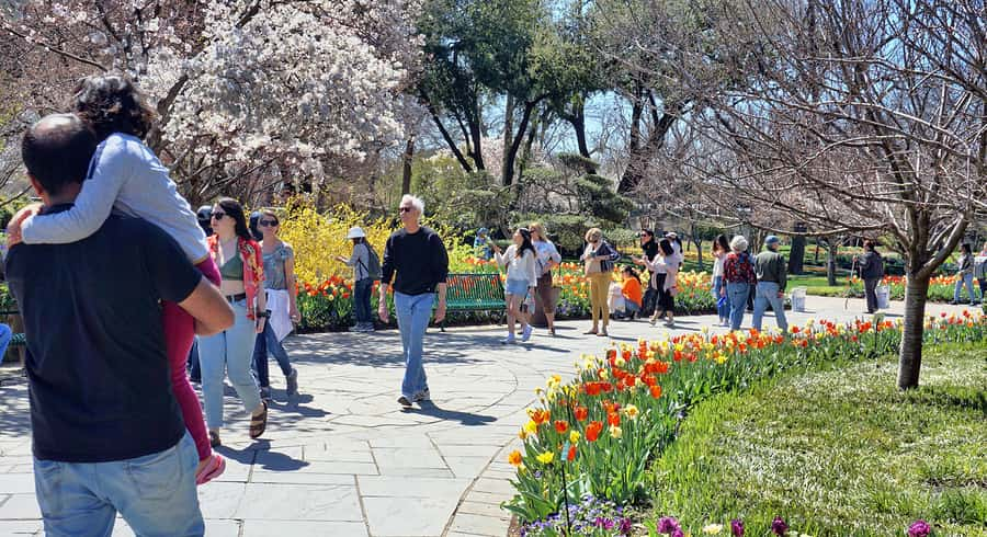 What to Do Around the Twin Cities in the Spring