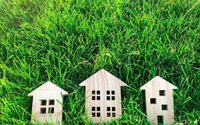 Eco-Friendly Practices in Tycon Properties & Green Tips for Renters